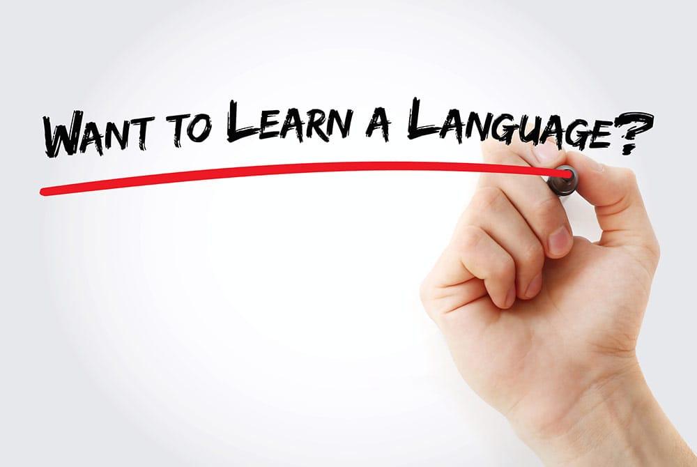Conceptos básicos de gramática española. 9 reglas esenciales y el uso básico de verbos que te permitirán crear oraciones fácilmente.